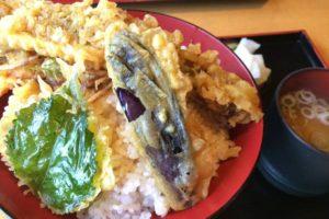 そば処 田畑屋【南魚沼市塩沢】名物のへぎ蕎麦は絶対に食べるべき!