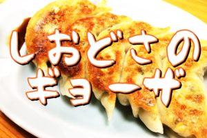 どんさ子塩沢17号店【味噌ラーメンとニンニク餃子で満腹!】