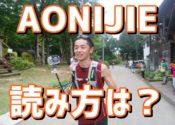 AONIJIEのトレラン用ベスト型バックパックで53km走ってみてわかったこと