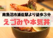 えづみや【南魚沼ランチ】浦佐駅周辺で本気丼を食べるならここっ!