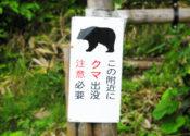 【随時更新】2019年10月、魚沼・南魚沼市での熊出没・被害の情報