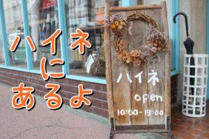 ハイネ【南魚沼市六日町】女子のハートをくすぐる雑貨のことならおまかせ!
