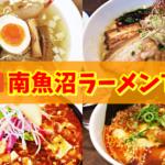南魚沼ラーメンランキングTOP5【地元グルメブロガーが本気の厳選!】