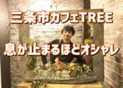 TREEツリー【三条カフェ】駐車場情報とハンバーガーなど全メニュー公開