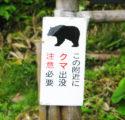 【随時更新】2019 魚沼・南魚沼市での熊出没の場所・クマ被害情報まとめ